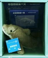 小海豚的第一天:宽吻海豚的故事(附磁带一盒)——海洋动物玩具系列