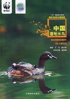 中国湿地水鸟(神奇多彩的中国湿地)